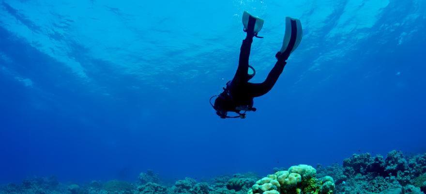 Cours de plongée sous marine lyon